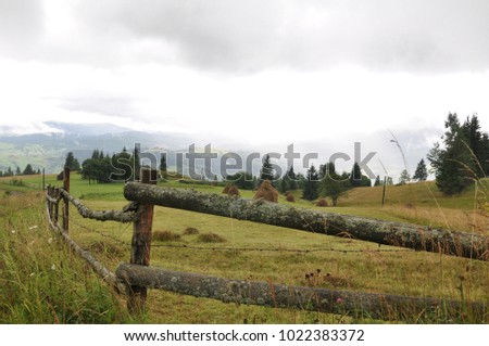 stacks of hay on a field in a mountain valley in the Carpathian mountains,  #1022383372