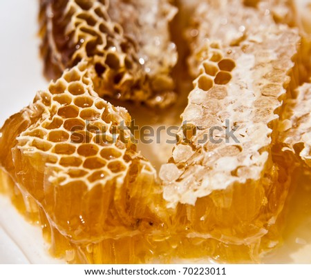 Stacks of honey comb on a plate