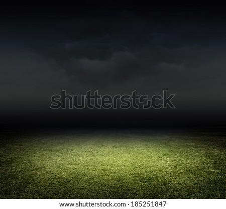 Stadium grasss
