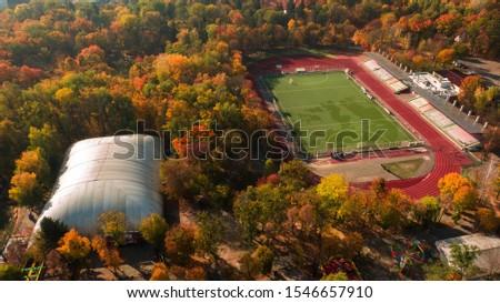stadium located in the autumn forest. Park #1546657910