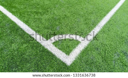 Stadium of football or soccer field with green grass #1331636738