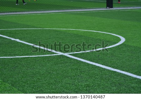 Stadium of football or soccer field with green grass. Sport indoor #1370140487