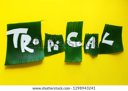 Stage of creation stencil. Word TROPICAL letters from green tropical palm leaves on yellow textured background. Original idea from natural material for summer design #1298943241