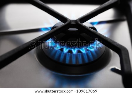 Stainless Steel Gas hob cooker