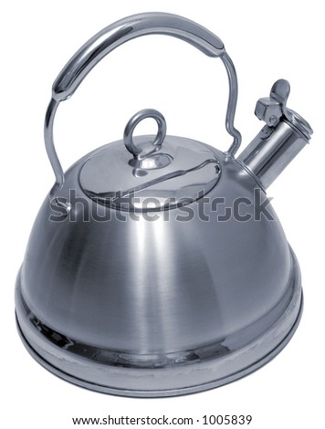 Stainless Steel Teapot - Isolated