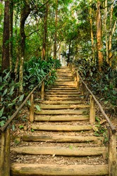 staircase made with wooden steps in a park in Sao Paulo, Brazil