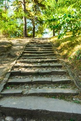Stairs and steps through a forest on a sunny day.