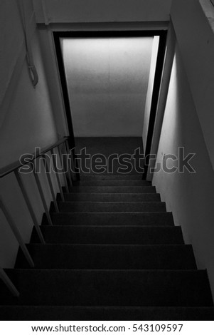 Stairs in the building. background black and white. #543109597
