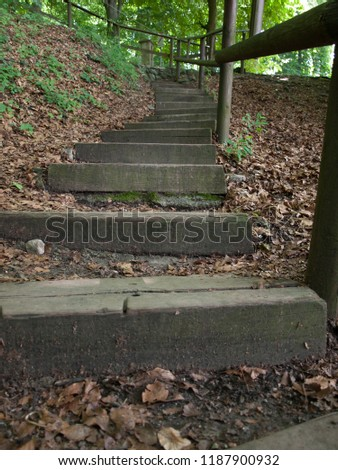 Stairs into the woods #1187900932