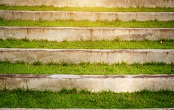 stairs,Stairs in the grass,grass,outdoor,green grass, landscape, moisture, fit exercise,nature, morning walk , hill