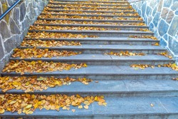 Stairway Covered With Fallen Foliage Autumn Norway
