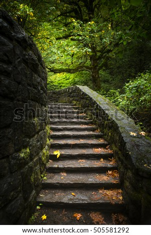 Stairway leading into lit trees with fall leaves. #505581292