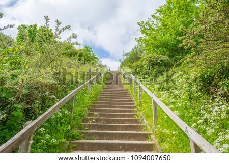 Stairway on a dune in sunlight in spring