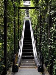 Stairway to natural wamder lust