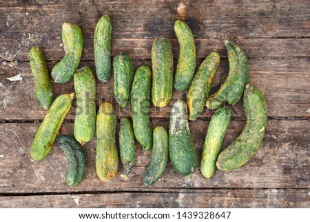 Stale cucumbers are laid out on an old wooden background. View from above at the spoiled cucumber crop. Foto stock ©