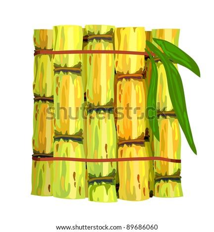 Stalks of sugar cane.  Raster version.
