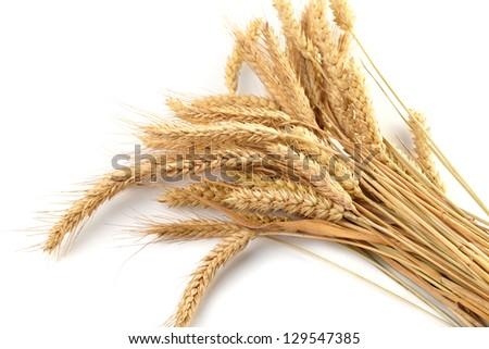 Stalks of wheat ears #129547385