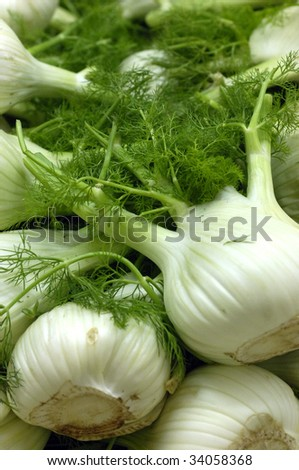 stall of fennel at the market