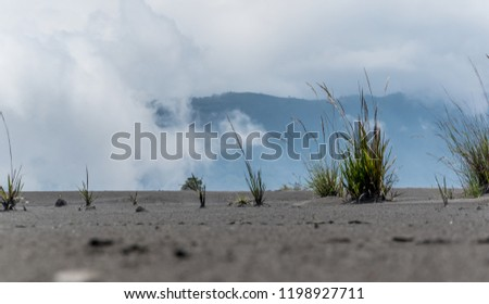 Standing at the Edge of the Vulcano Mount Bromo, Indonesia, Asia #1198927711
