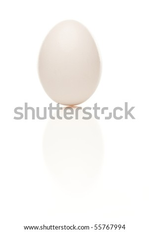 Standing White Egg Isolated on a White Background.