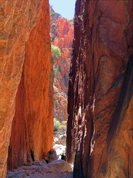 Standley Chasm glowing red during midday sun