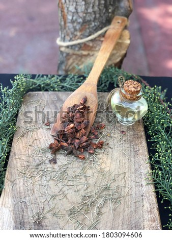 Star anise (Illicium verum) in a wooden spoon with pine leaves on wood with star anise oil (yildiz anason in Turkish) Stok fotoğraf ©