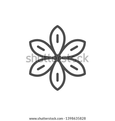 Star anise line icon isolated on white