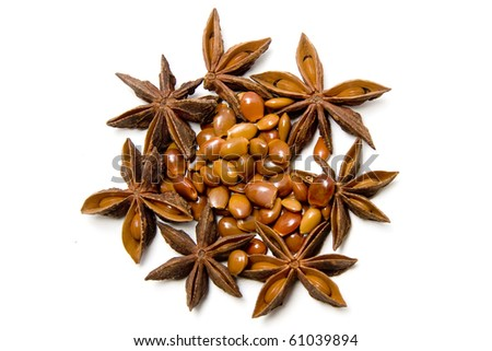 star anise, seeds and pods on a white background
