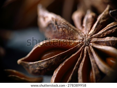 Star anise seeds. Macro. Blurred background