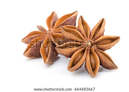 Star anise spice fruits and seeds isolated on white background closeup #664683667