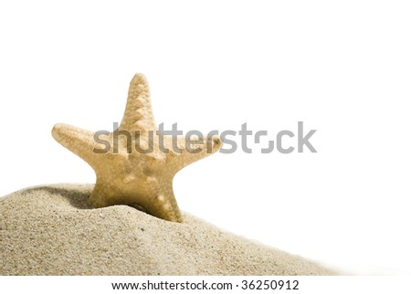 star fish and sand isolated on white background