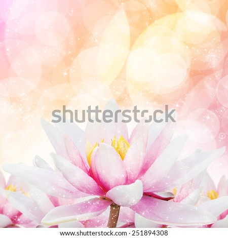 Free photos black and white abstract of lotus flower abstract of star glitter lotus 251894308 mightylinksfo