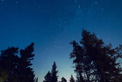 Star Trail Photo of the Alberta Night Sky
