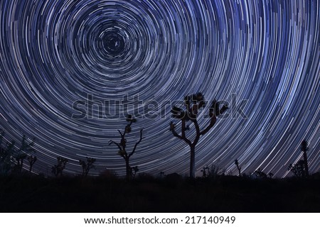 Star Trails and Milky Way in Joshua Tree National Park
