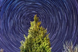 Star trails in Chatham MA, to the north, point to the north star or Polaris, in front of a tree
