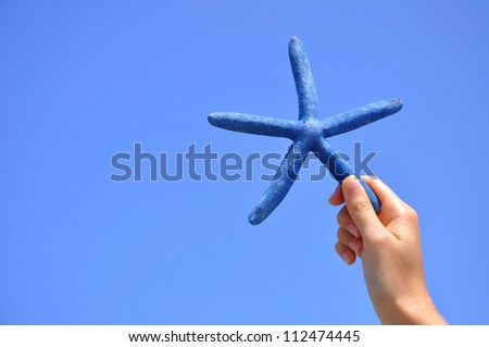 Starfish against pretty blue sky