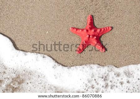 stock-photo-starfish-and-ocean-wave-on-sandy-tropical-beach-86070886.jpg
