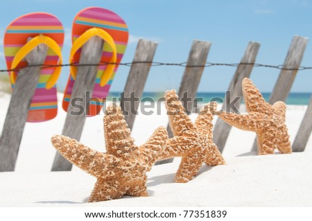 starfish and sandals by fence
