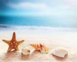 Starfish and sea shells on the beach and ocean as  background. Summer beach. Seashells.
