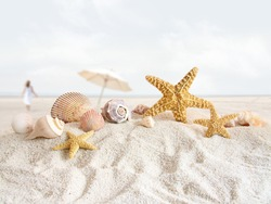 Starfish and seashells in the sand at the beach
