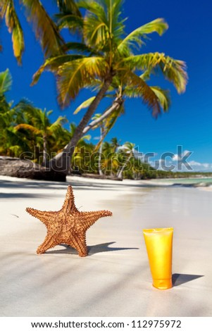 Starfish and sunblock tube on caribbean sea coastline with palms, Dominican Republic