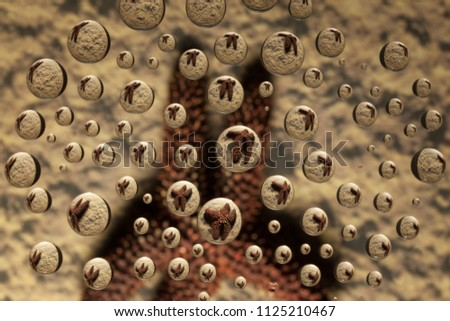Starfish appears in water drops on a sandy background using Water Drop Refraction. Drops appear suspended above the background and refracted image. Horizontal, color. #1125210467