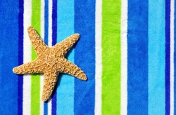 Starfish laying on striped towel room for your text