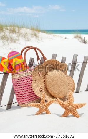 starfish lounging at seashore