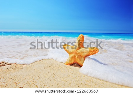 Starfish on a beach with clear sky and wave, Greece #122663569