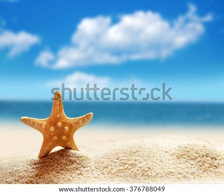 Starfish on a summer sandy beach. ocean, sky and cloud.