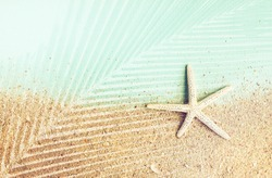 Starfish on sand and blue paper, palm leaf shadow effect, Styled faded retro tones