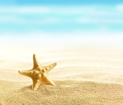 Starfish on sandy beach