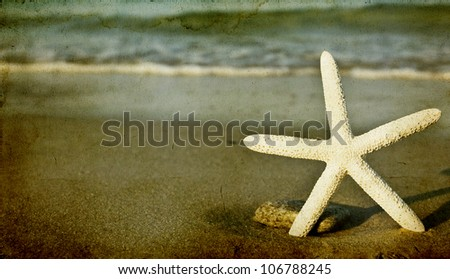 starfish on the beach   vintage ...