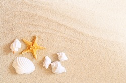 Starfish on the seashore and summer beach